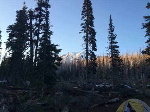 Mount Adams looking good from our campsite the night before